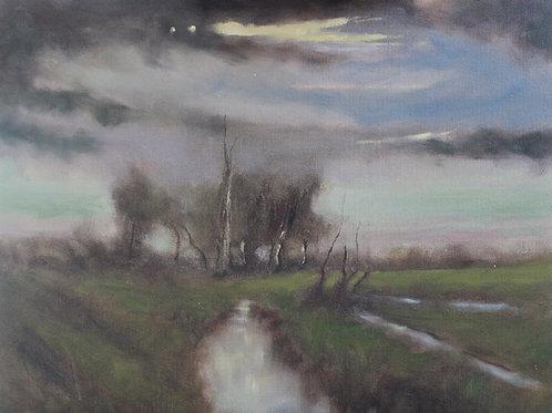 Marsh At Night