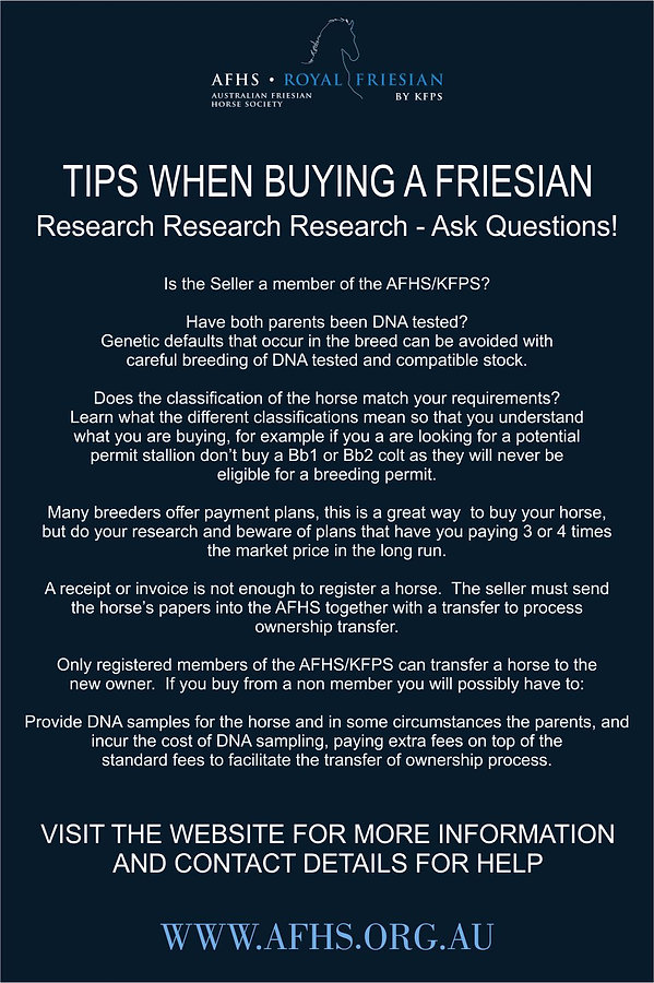 TIPS WHEN BUYING A FRIESIAN.jpg