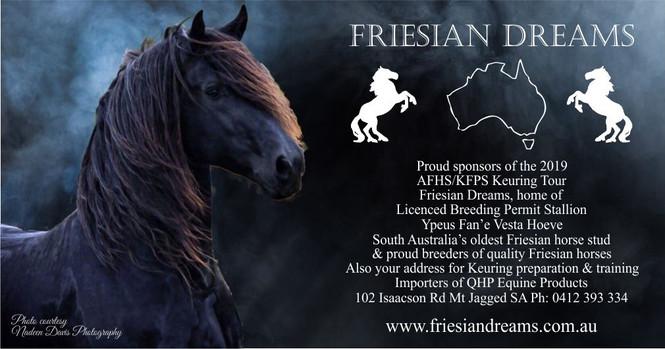 Friesian Dreams