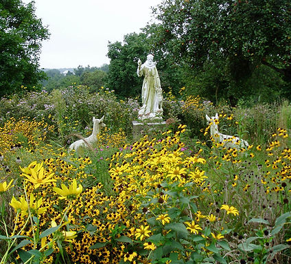 StFrancis in Nature.jpg