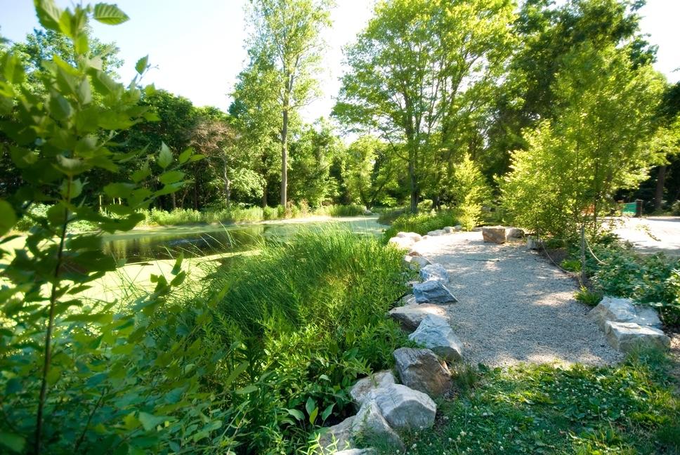 Schuylkill Center Pond