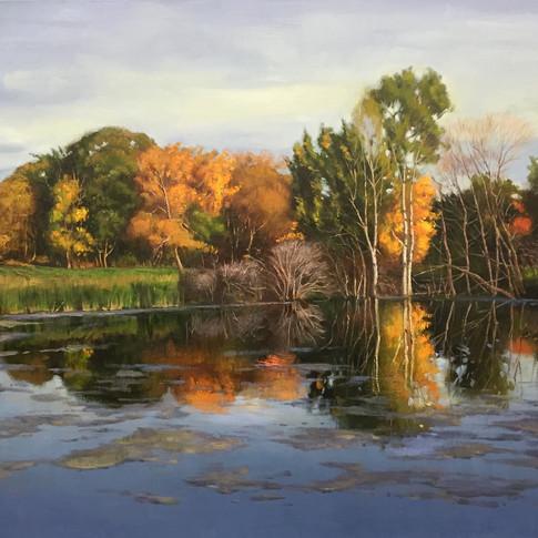 40x45 Oil on Canvas