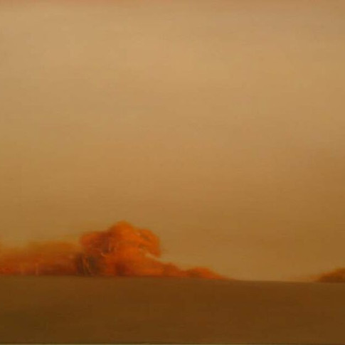 40x35 Oil on Canvas