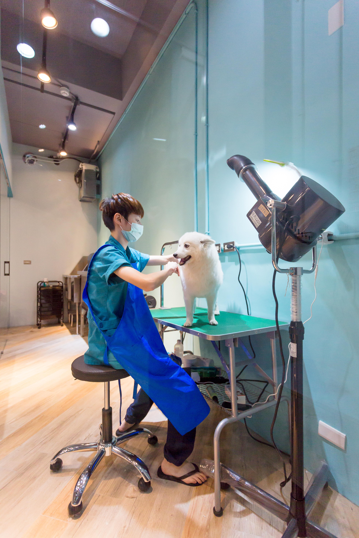 專業美容師全手吹服務