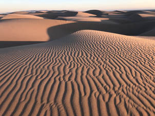 Beautiful dune.jpg Oceano Dunes_Protect California State Parks