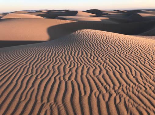 Beautiful dune.jpg Oceano Dunes_Protect California State Parks
