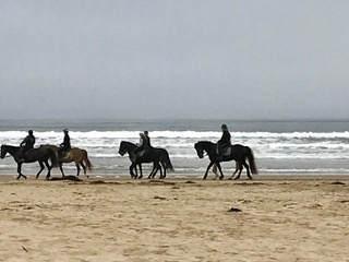 Families Beachgoers Kids, Protect Oceano Dunes Beach, San Luis Obispo County California