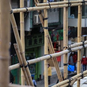 The Many Uses of Bamboo