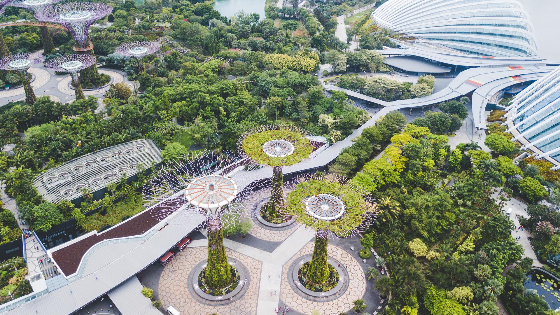 singapore (16 of 18).jpg
