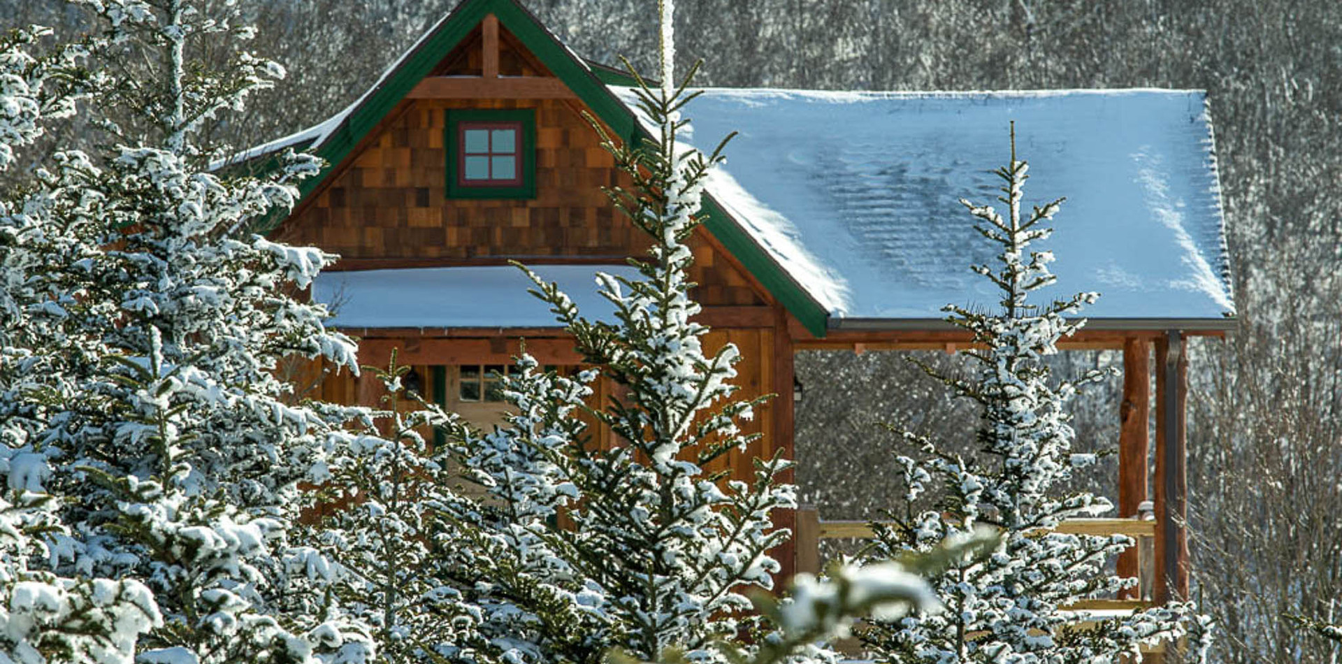 Snow Sunalei-309.jpg