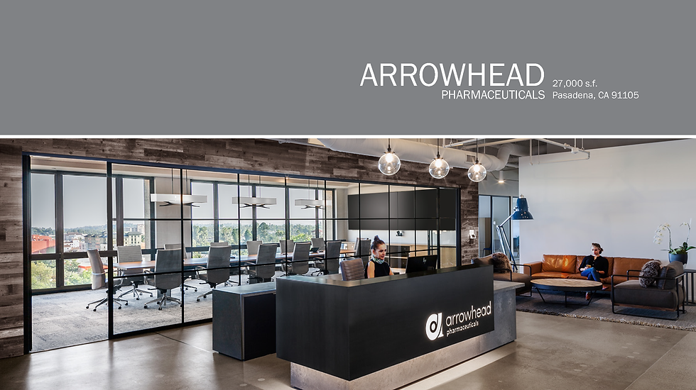 Arrowhead_Wix Format_021121_p1.tiff