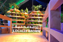 ZONE 3: LOCALLY GROWN