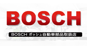 bosch_rect.png
