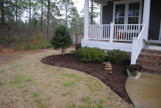 Left side front yard with new mulch and bedding.