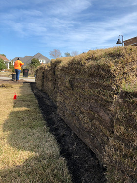 9 pallets of sod are ready to be installed