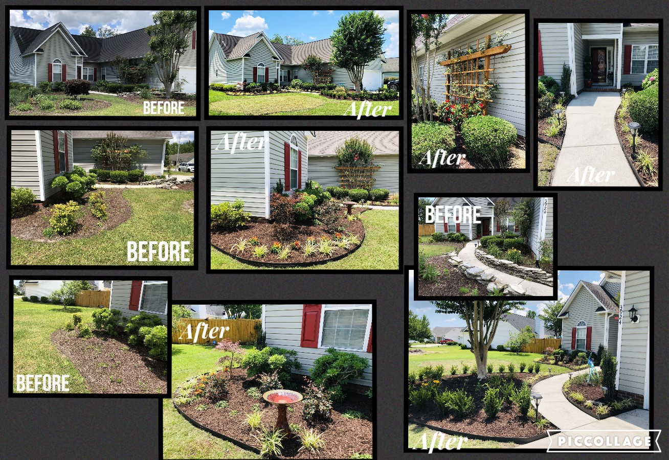 Northchase Before & After