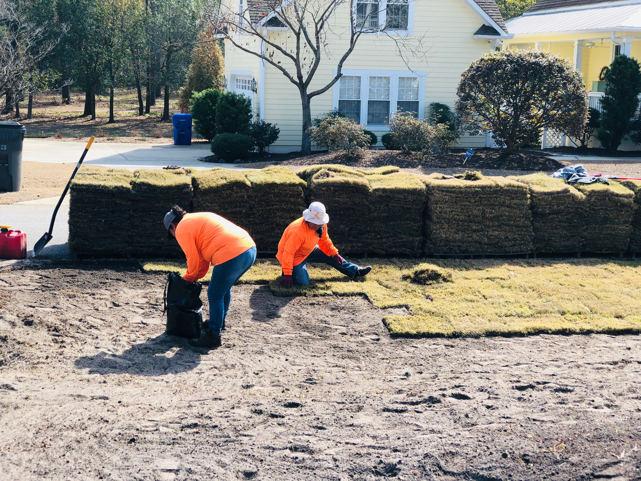 The sod must be carefully aligned for a cohesive look.