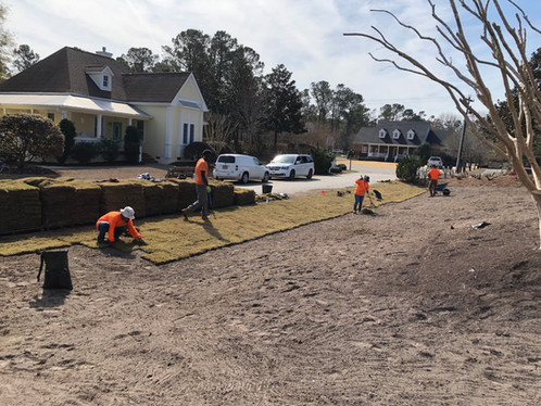 Prep work is done, time to start laying the sod.
