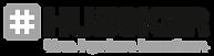 HUESKER_Logo_Deutsch_RGB.png