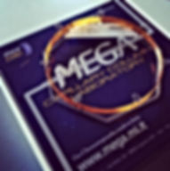Mega Column Logo1.jpg