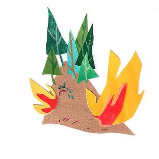 forest fireLR.jpg