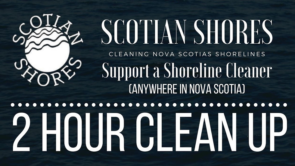 Hire a Shoreline Cleaner for 2 hours (Anywhere in Nova Scotia)