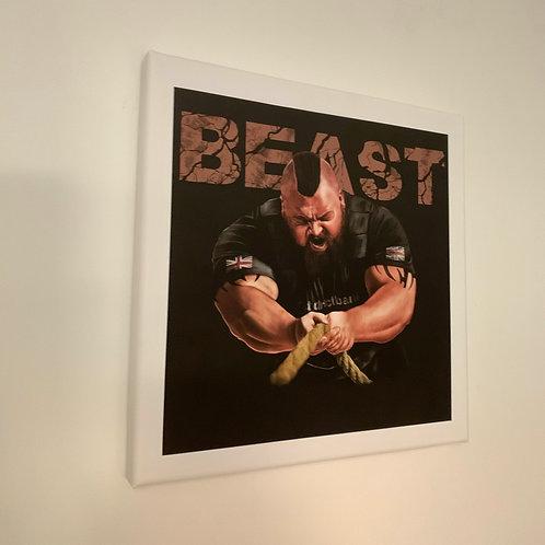 BEAST canvas
