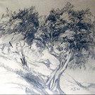 Olivenbäume, 1922