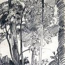 Baumstudie, 1922