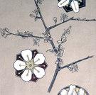 Blütenzweig und ornamentale Blütenabstraktionen, 1902