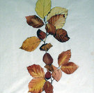 Blätter, um 1896