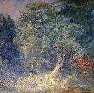 Waldlichtung mit Laubbaum, 1948