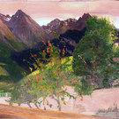 Plavna (von Ftan aus), 1908