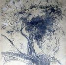 Olivenbaum, 1922