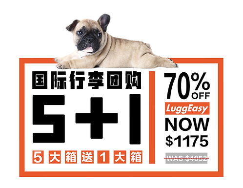 5+1 国际大箱团购 ( FedEx官方价格:$6117)