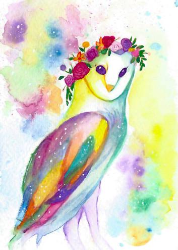 RainbowOwl_Unmarked.jpg