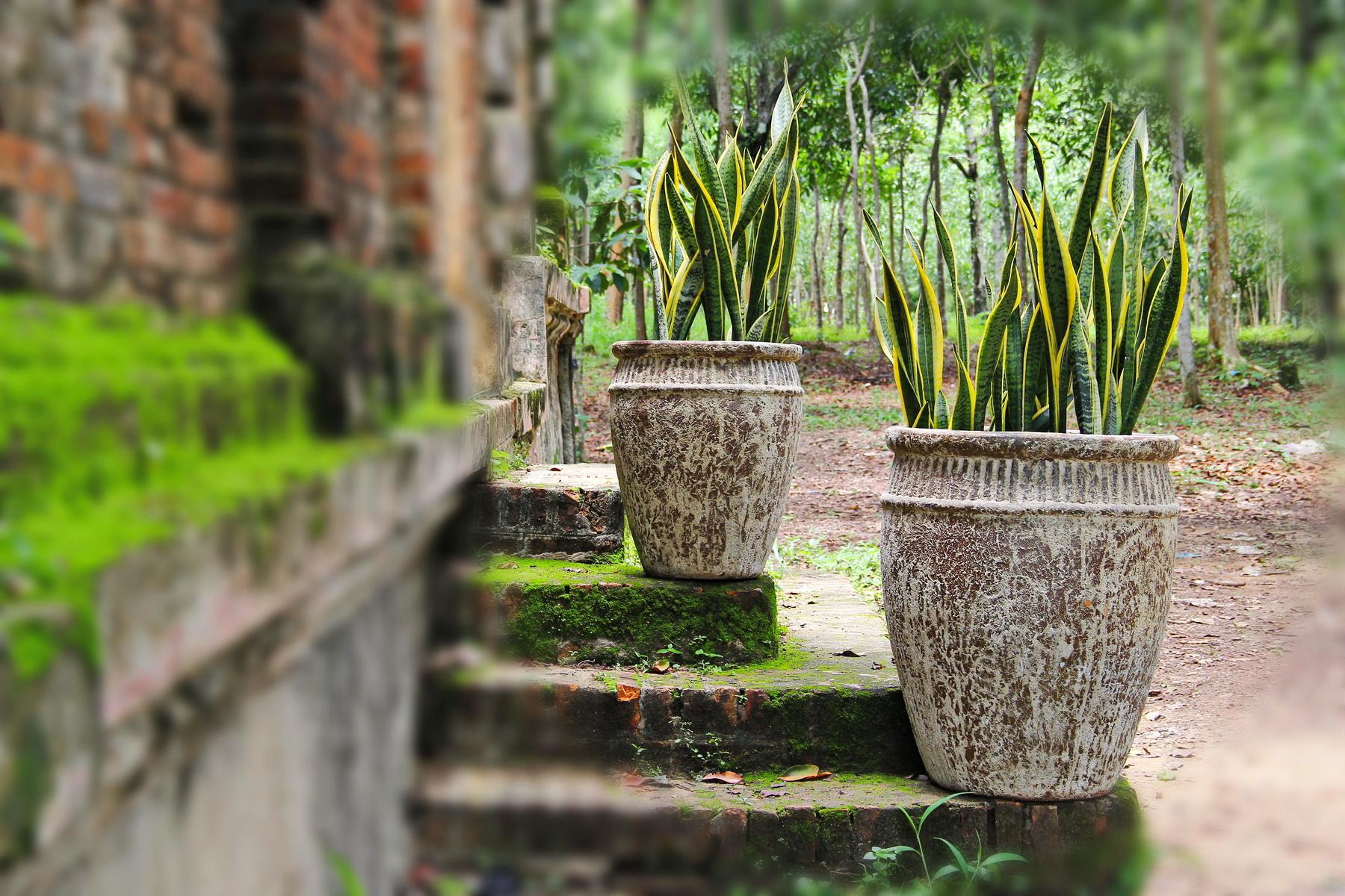 Vietnam ceramic, pottery 09