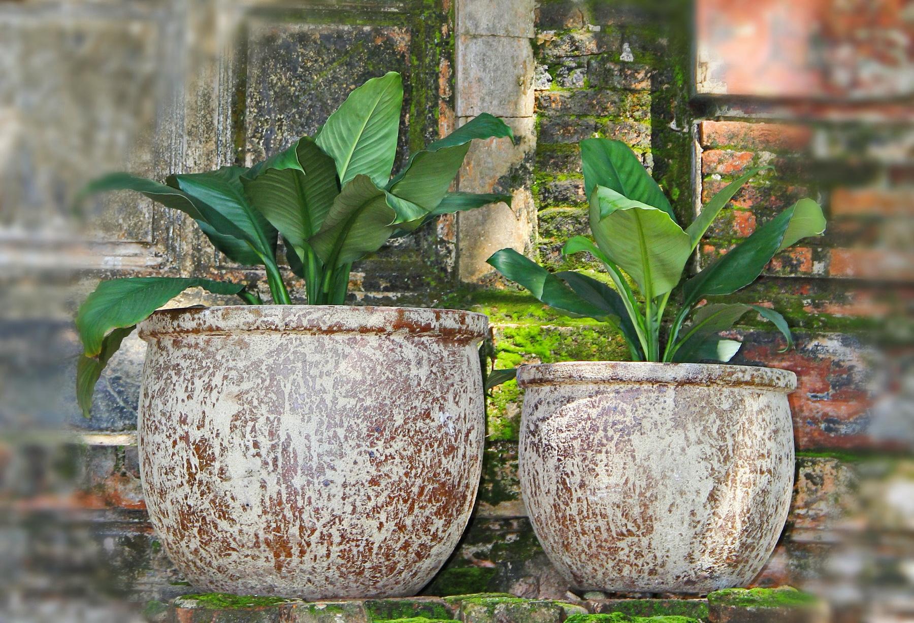 Vietnam ceramic, pottery 07