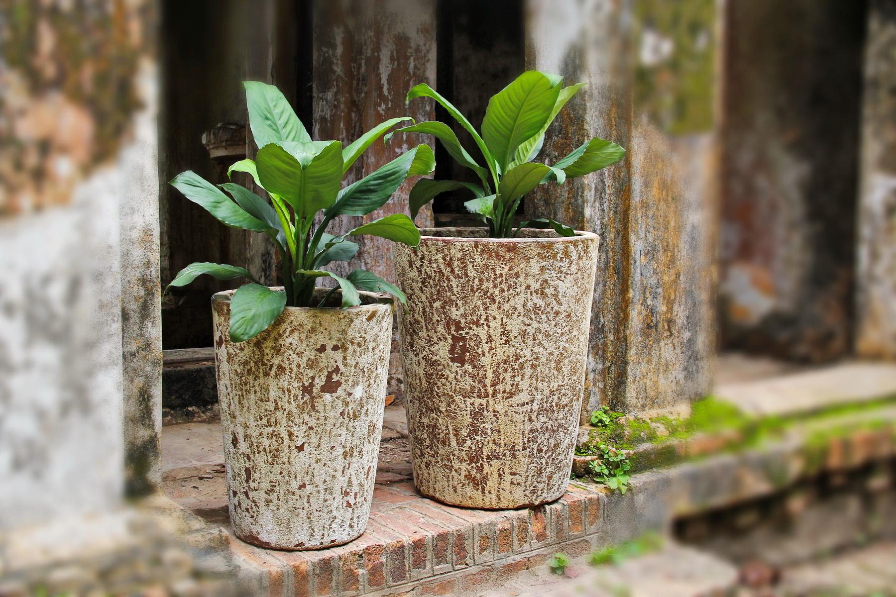 Vietnam ceramic, pottery 17