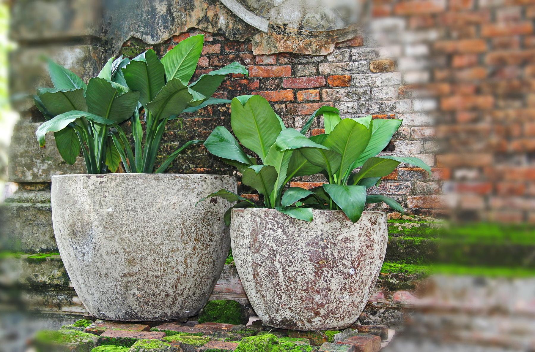 Vietnam ceramic, pottery 03