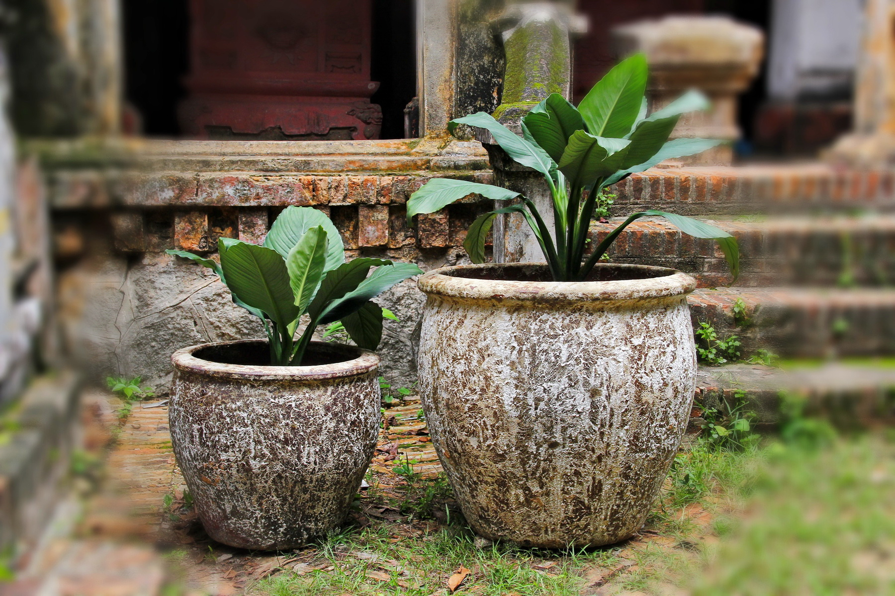 Vietnam ceramic, pottery 15