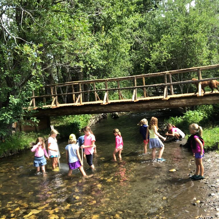 Wilderness Week (Grades 1-2)