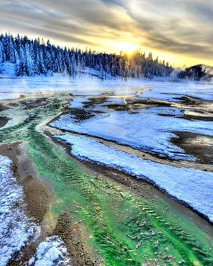 Yellowstone Park.jpg