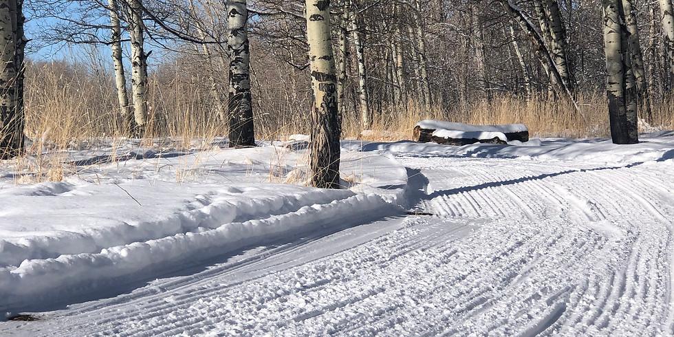 Valentine's Skate/Ski Package