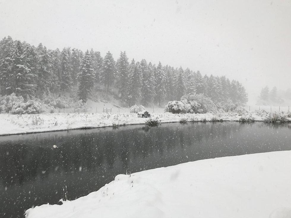 bodhi farms winter.JPG