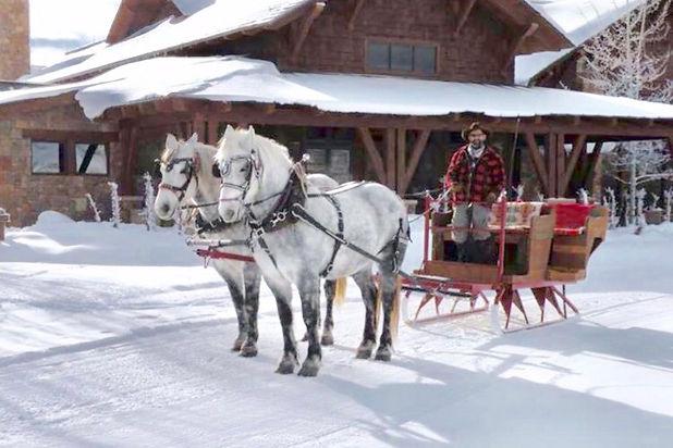 bodhi farms sleigh ride.jpg