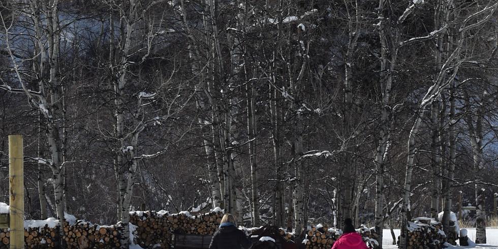 Snow Moon Nordic Ski Tour