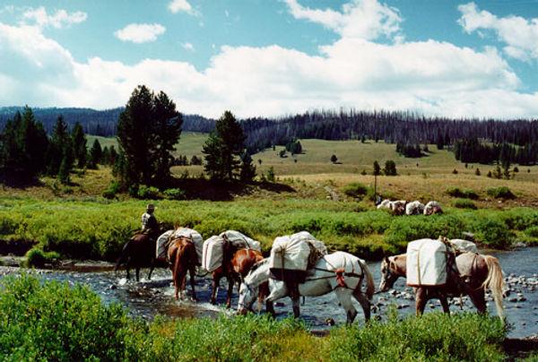 Pack Trips Montana.jpg