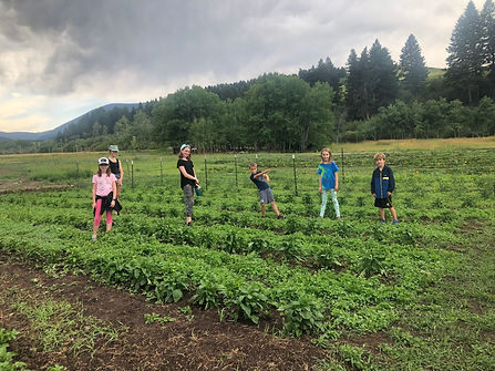 Bodhi Farms Kids Camp Garden.jpg
