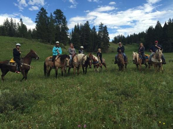 jakes horses montana.jpg